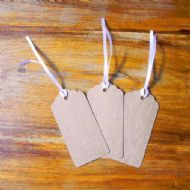 Pack of 100 Kraft Tags, Gift, Wedding, Wish Tree Tags with No Ribbon Or String